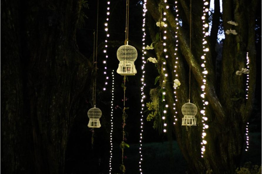 iluminar el jardin