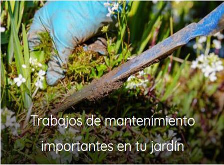 trabajos de mantenimiento para jardin